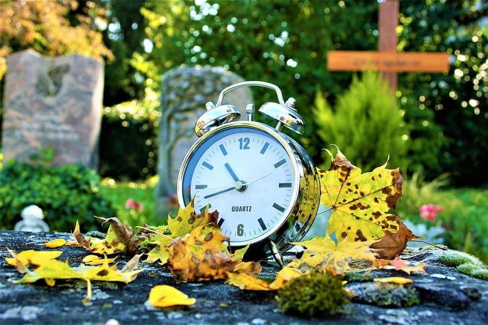 autumn-2785954_960_720
