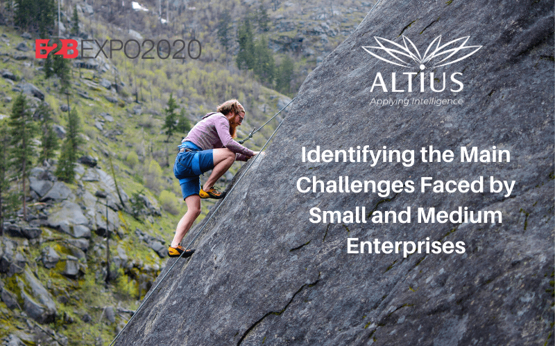Identifying-the-Main-Challenges-Faced-by-Small-and-Medium-Enterprises